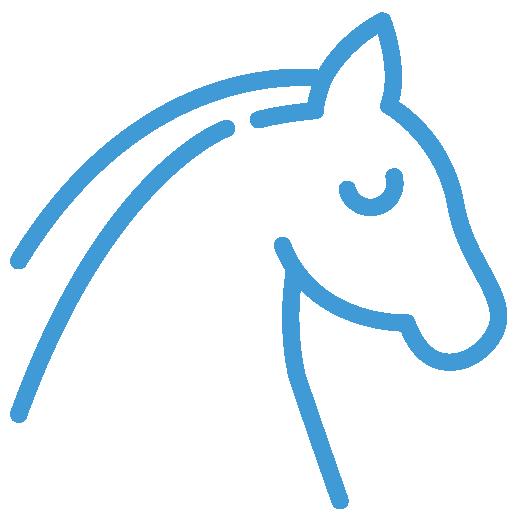 rispetto per i cavalli